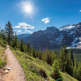 Mountain hiking trail in Winter Park, Colorado.